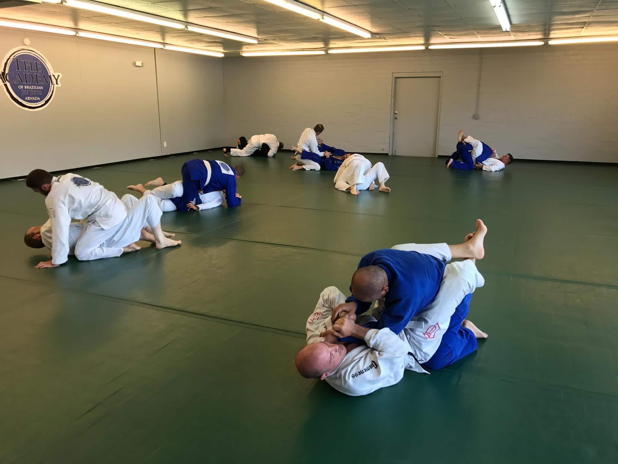Arvada Brazilian Jiu Jitsu Programs image
