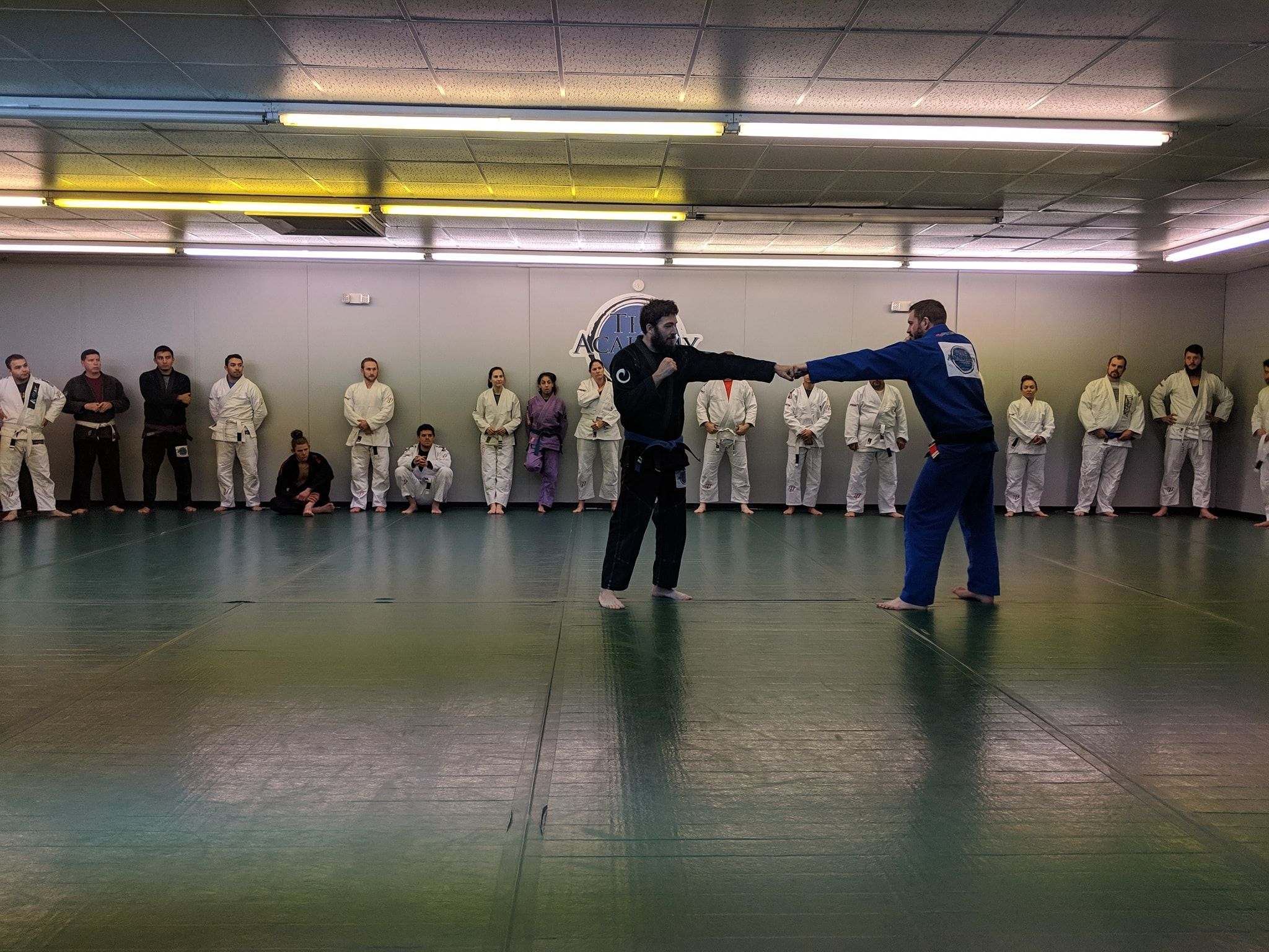 Arvada Brazilian Jiu Jitsu Special Offers image