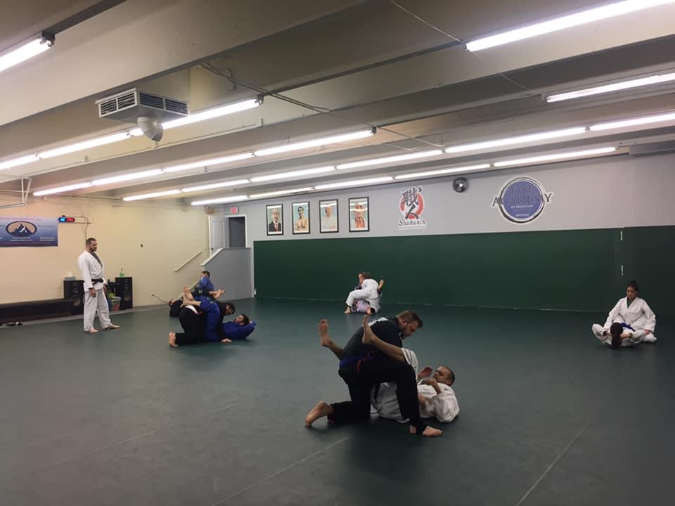 Arvada Brazilian Jiu Jitsu Brazilian Jiu Jitsu Overview